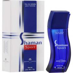 Туалетная вода для мужчин Shaman Sport 100 мл ARNO SOREL