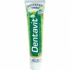 Зубная паста Лечебные травы Dentavit ВИТЭКС