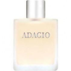 Туалетная вода Adagio 100 мл DILIS