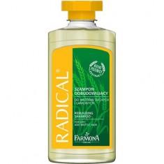 Шампунь для сухих волос FARMONA